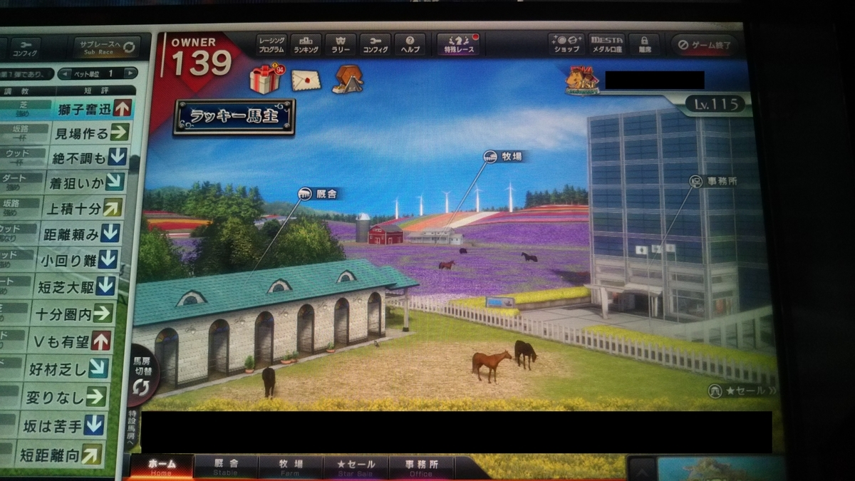 f:id:hihimaru_starhorse:20210302102123j:plain