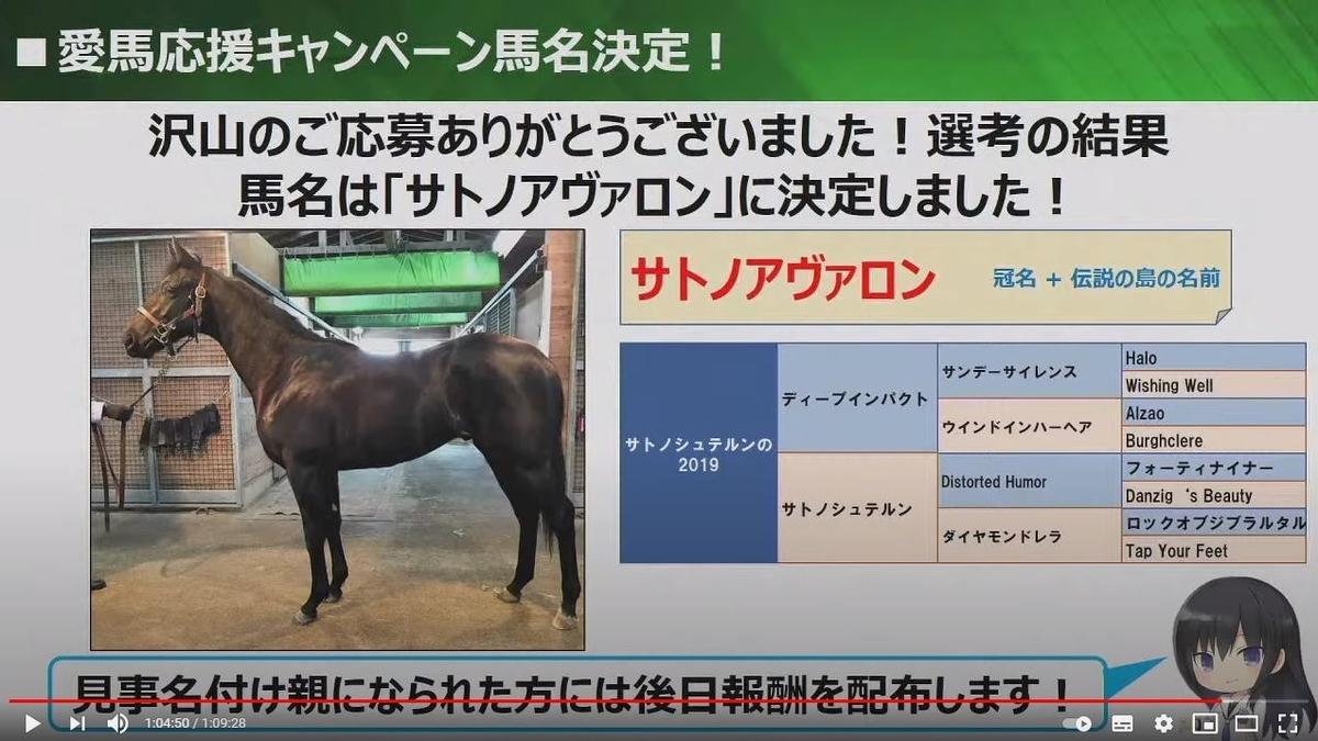 f:id:hihimaru_starhorse:20210316015637j:plain