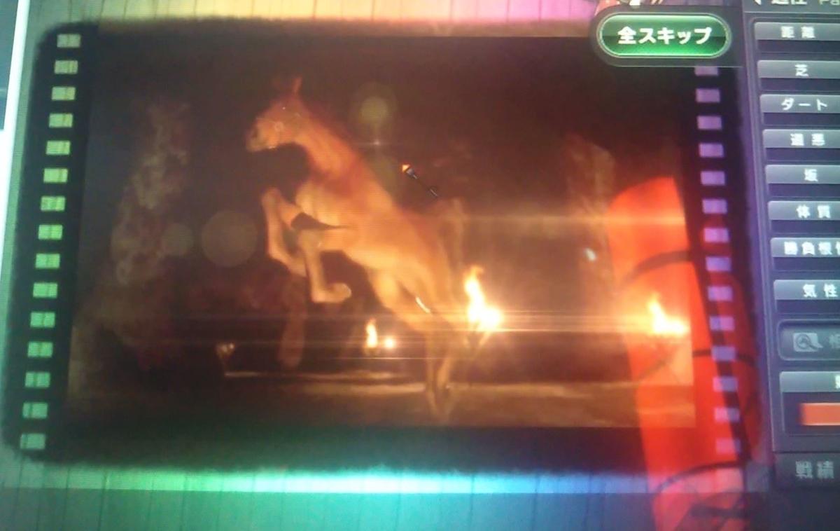 f:id:hihimaru_starhorse:20210316020809j:plain
