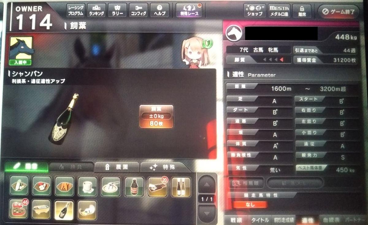 f:id:hihimaru_starhorse:20210531162259j:plain