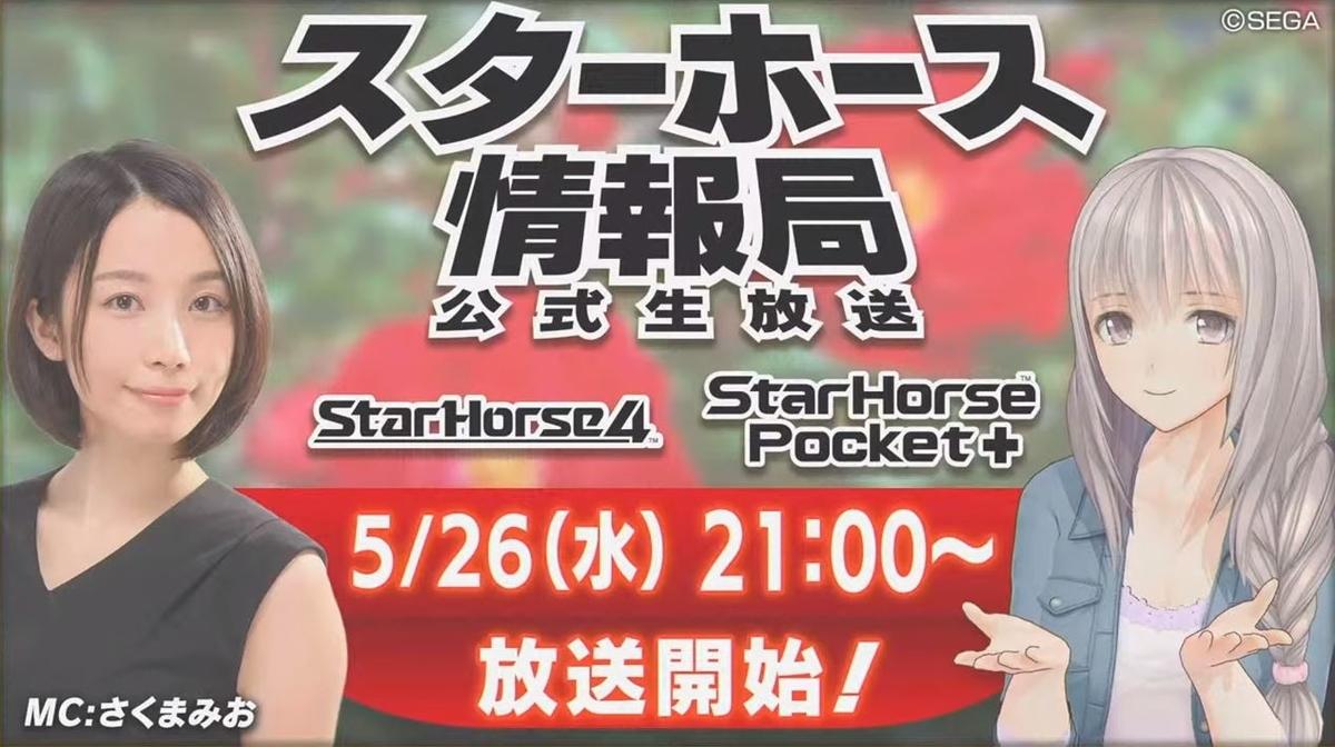 f:id:hihimaru_starhorse:20210531165400j:plain