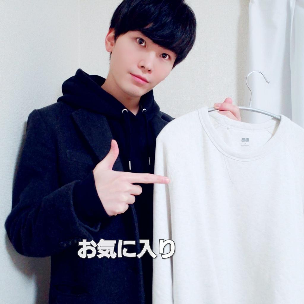 f:id:hihowru:20190203195123j:plain