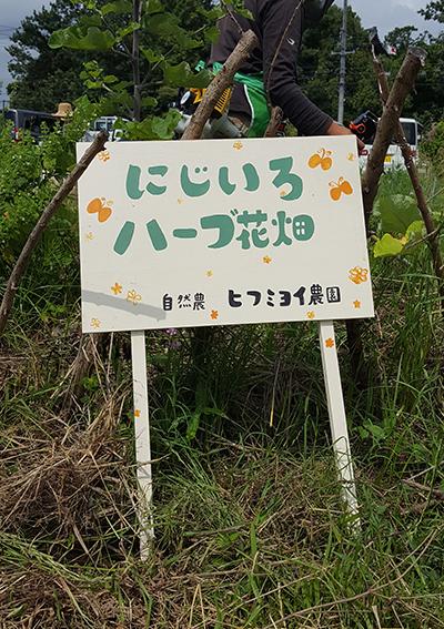 f:id:hihumiyoi:20160617223143j:plain
