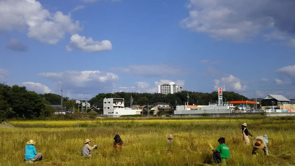 f:id:hihumiyoi:20161016182056j:plain