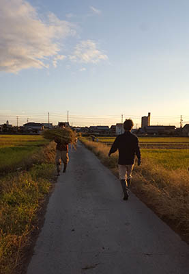 f:id:hihumiyoi:20161101230434j:plain