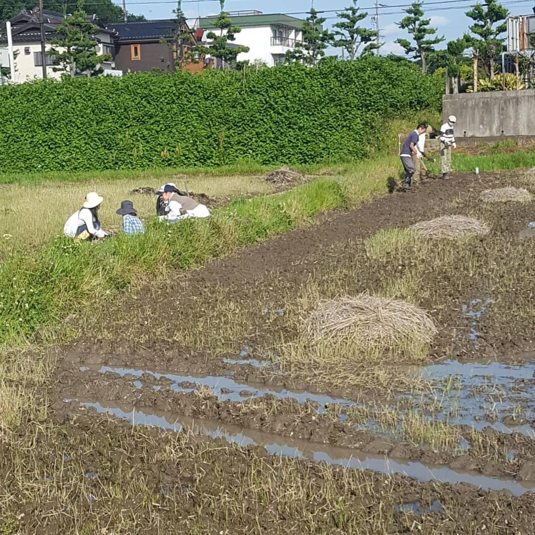 f:id:hihumiyoi:20210503201445j:plain