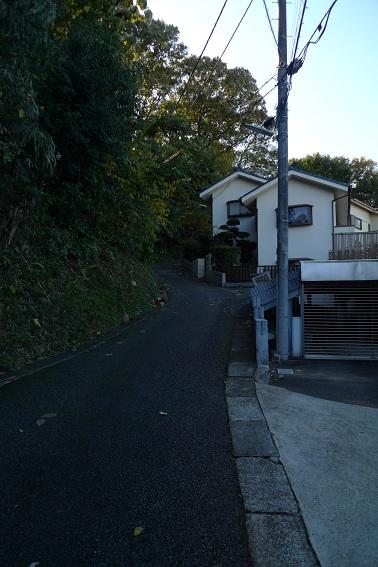 f:id:hikada:20121118140427j:image