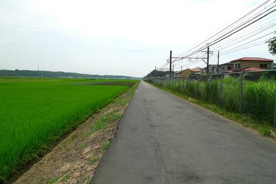 f:id:hikada:20130721112734j:image