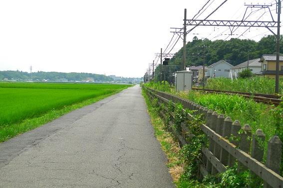 f:id:hikada:20130721113048j:image