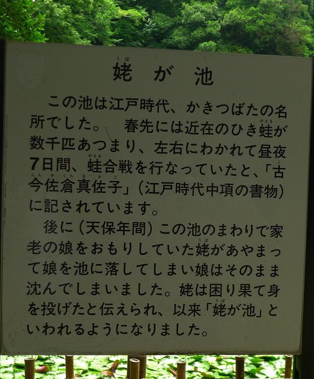 f:id:hikada:20130721122008j:image