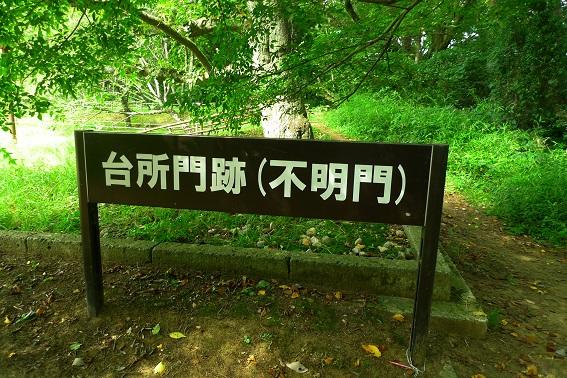 f:id:hikada:20130721143547j:image
