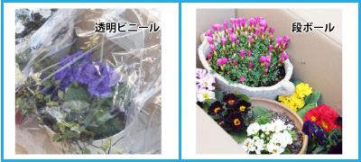 f:id:hikari-mimo:20170117173822p:plain