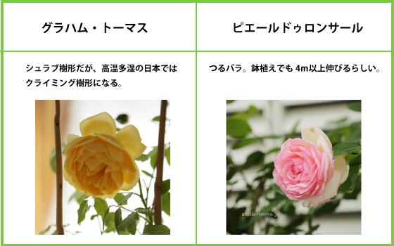 f:id:hikari-mimo:20180110172257j:plain