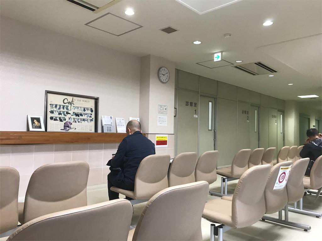 f:id:hikari-san:20191023163056j:image