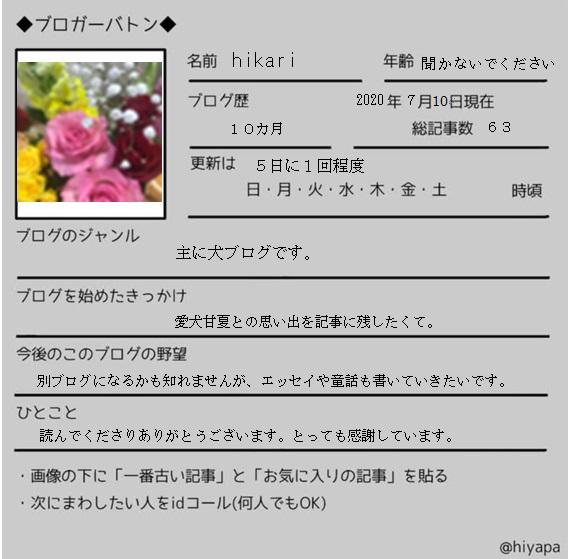 f:id:hikari-san:20200711172435j:plain