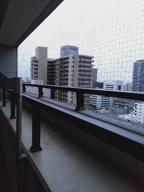 f:id:hikari1001tt:20190402132546j:image