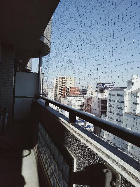 f:id:hikari1001tt:20191217090128j:image