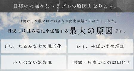 f:id:hikari2015:20160705145719j:plain