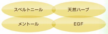 f:id:hikari2015:20160802155004j:plain