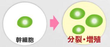 f:id:hikari2015:20161005145404j:plain