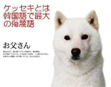 f:id:hikari369:20210304233407j:plain