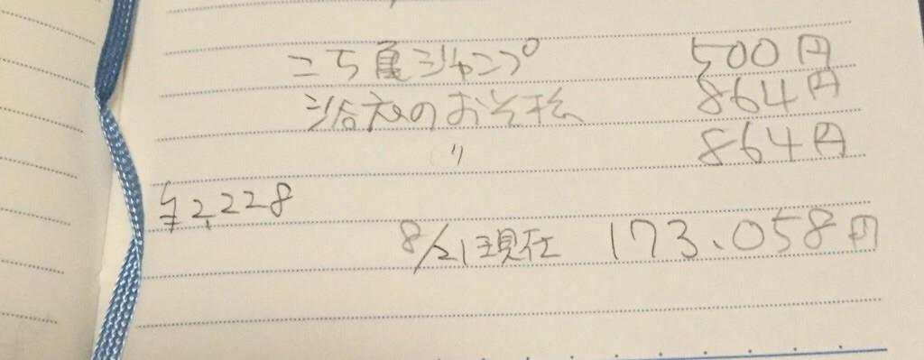 f:id:hikari53:20160821224710j:image