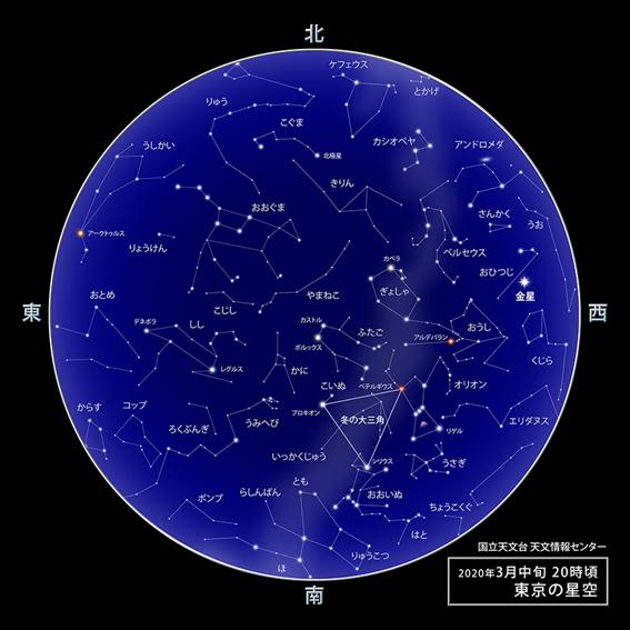 f:id:hikaricanopus3:20200220224616p:plain