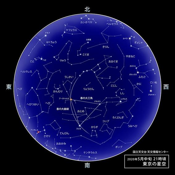 f:id:hikaricanopus3:20200415231748p:plain