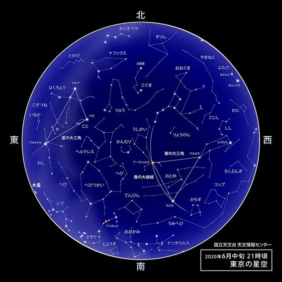 f:id:hikaricanopus3:20200520234227p:plain