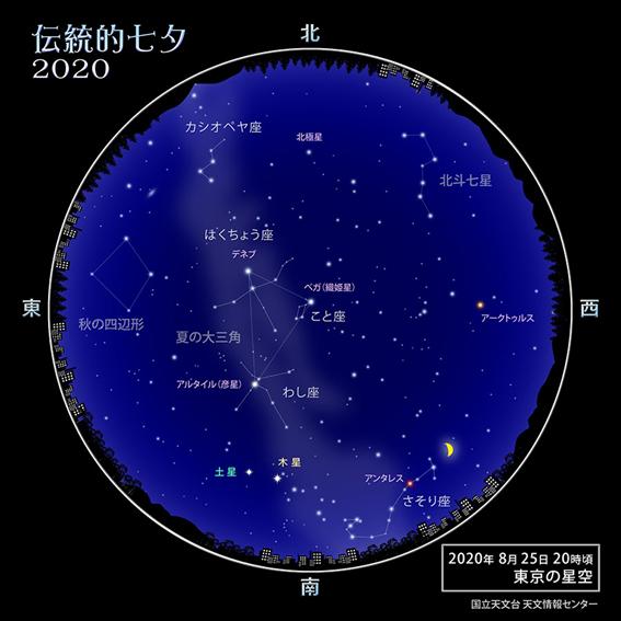 f:id:hikaricanopus3:20200722234001p:plain