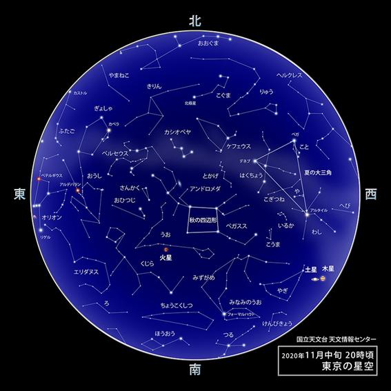 f:id:hikaricanopus3:20201022233056p:plain