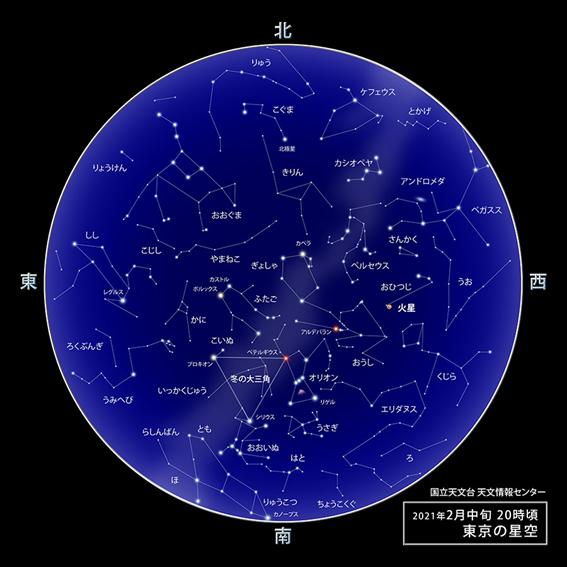 f:id:hikaricanopus3:20210121232455p:plain