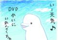 [指で描いてみた。][現代の生き物][水の生き物][海生哺乳類][ハクジラ亜目][肉食][the mammals]今の気持ちを描いてみた by シロイルカ