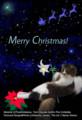 [「表示」済][クリスマス]Kotaro's First Christmas Card (小太郎くんver です)