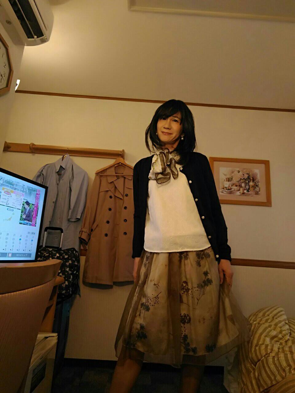 f:id:hikarireinagatsuki:20181117164728j:image