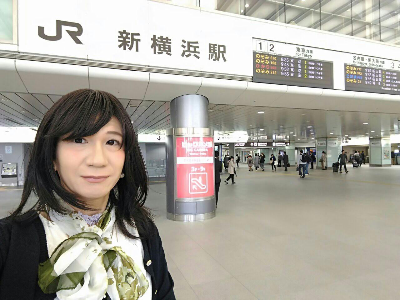 f:id:hikarireinagatsuki:20181117164741j:image