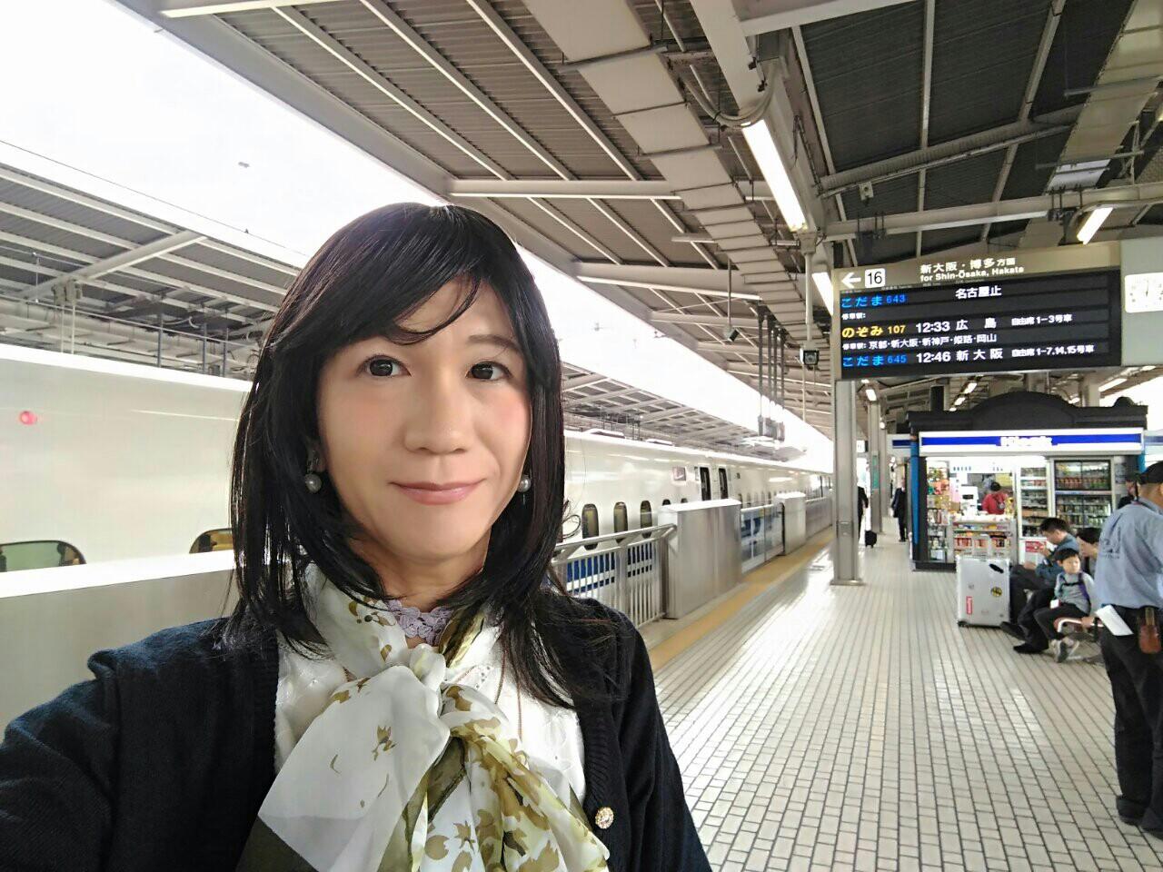 f:id:hikarireinagatsuki:20181117164848j:image
