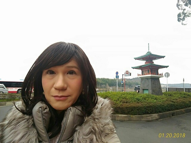 f:id:hikarireinagatsuki:20181205231934j:image