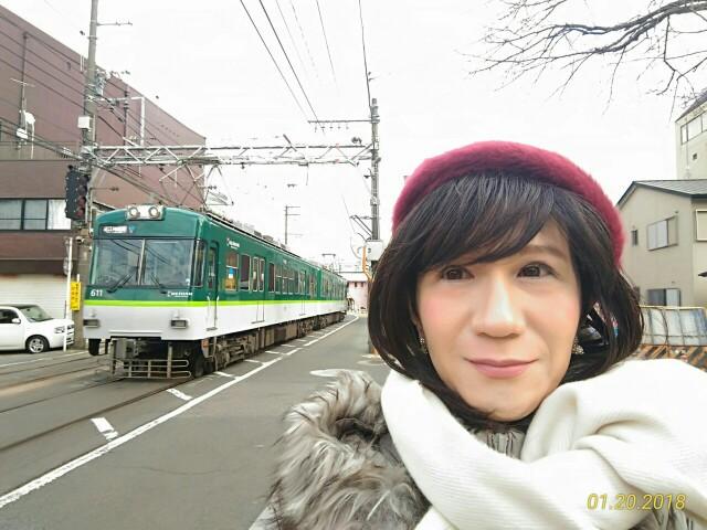 f:id:hikarireinagatsuki:20181205234055j:image