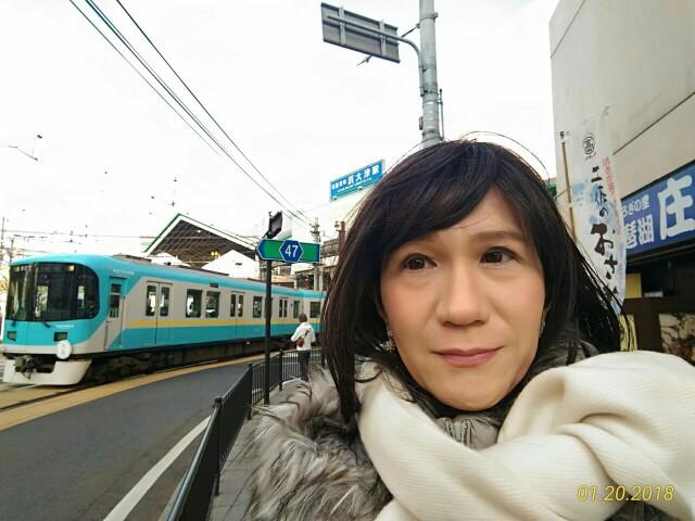f:id:hikarireinagatsuki:20181205234154j:image