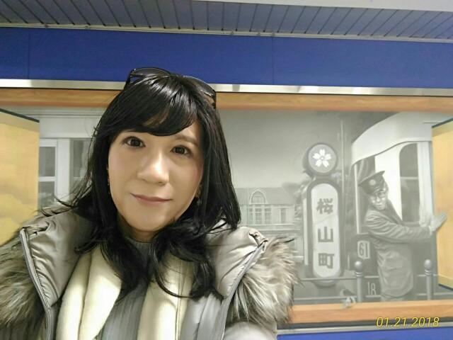 f:id:hikarireinagatsuki:20181205234655j:image