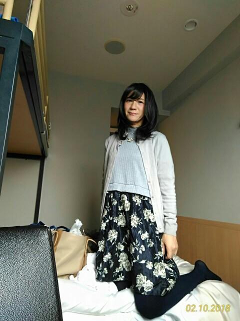f:id:hikarireinagatsuki:20181211232901j:image