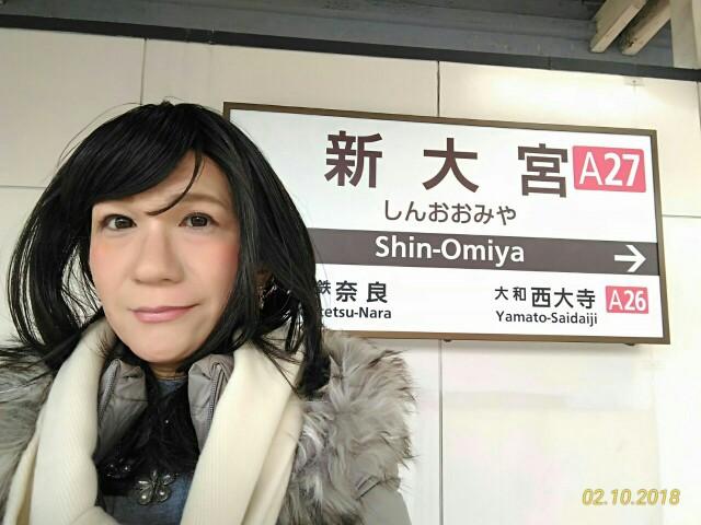 f:id:hikarireinagatsuki:20181211232925j:image