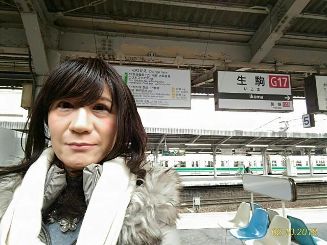 f:id:hikarireinagatsuki:20181211233020j:image