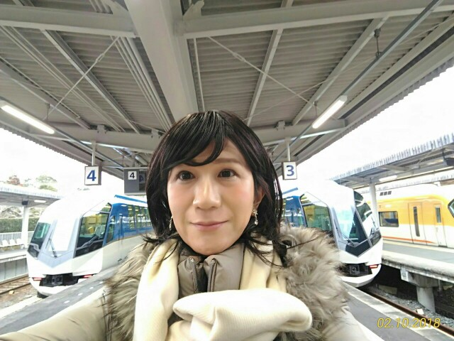 f:id:hikarireinagatsuki:20181211234147j:image