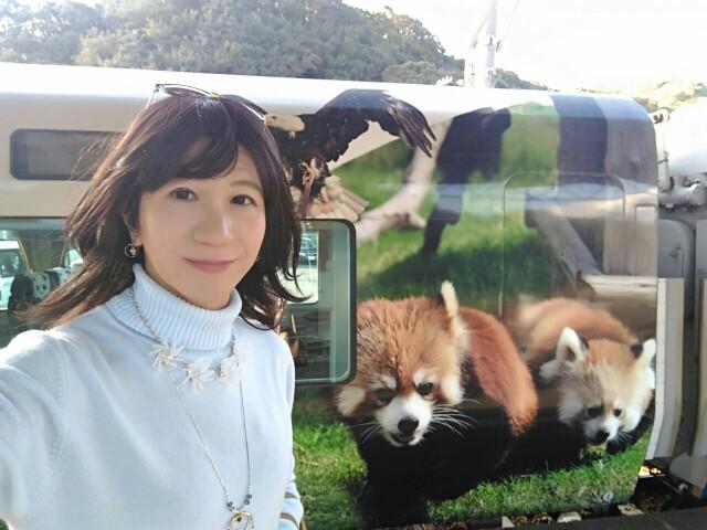 f:id:hikarireinagatsuki:20181214101224j:image