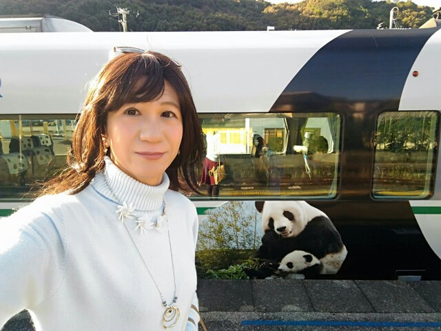 f:id:hikarireinagatsuki:20181214101246j:image
