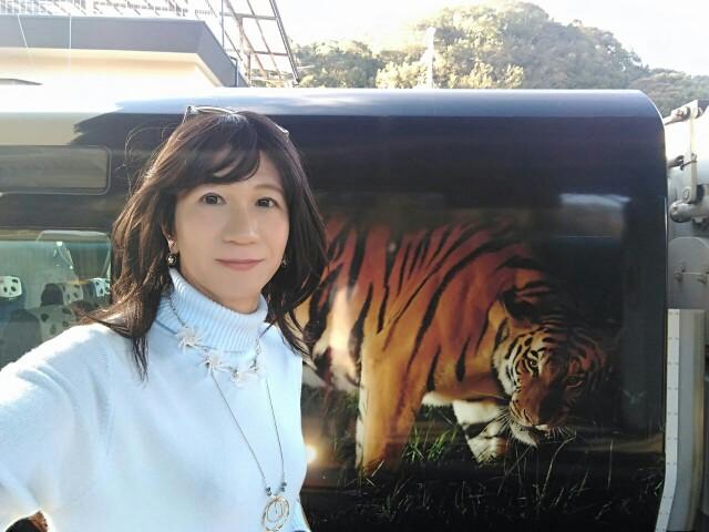 f:id:hikarireinagatsuki:20181214101426j:image