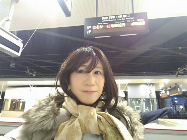 f:id:hikarireinagatsuki:20181214101647j:image