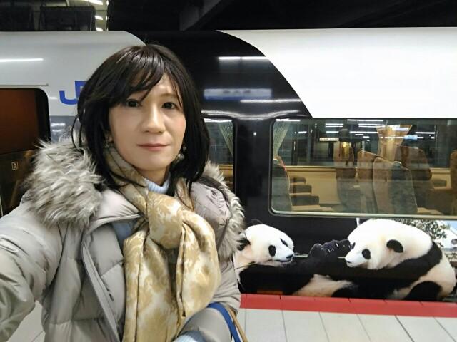 f:id:hikarireinagatsuki:20181220220047j:image